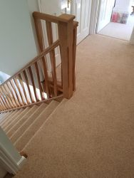 Carpets by Floor Styles Flooring Specialist
